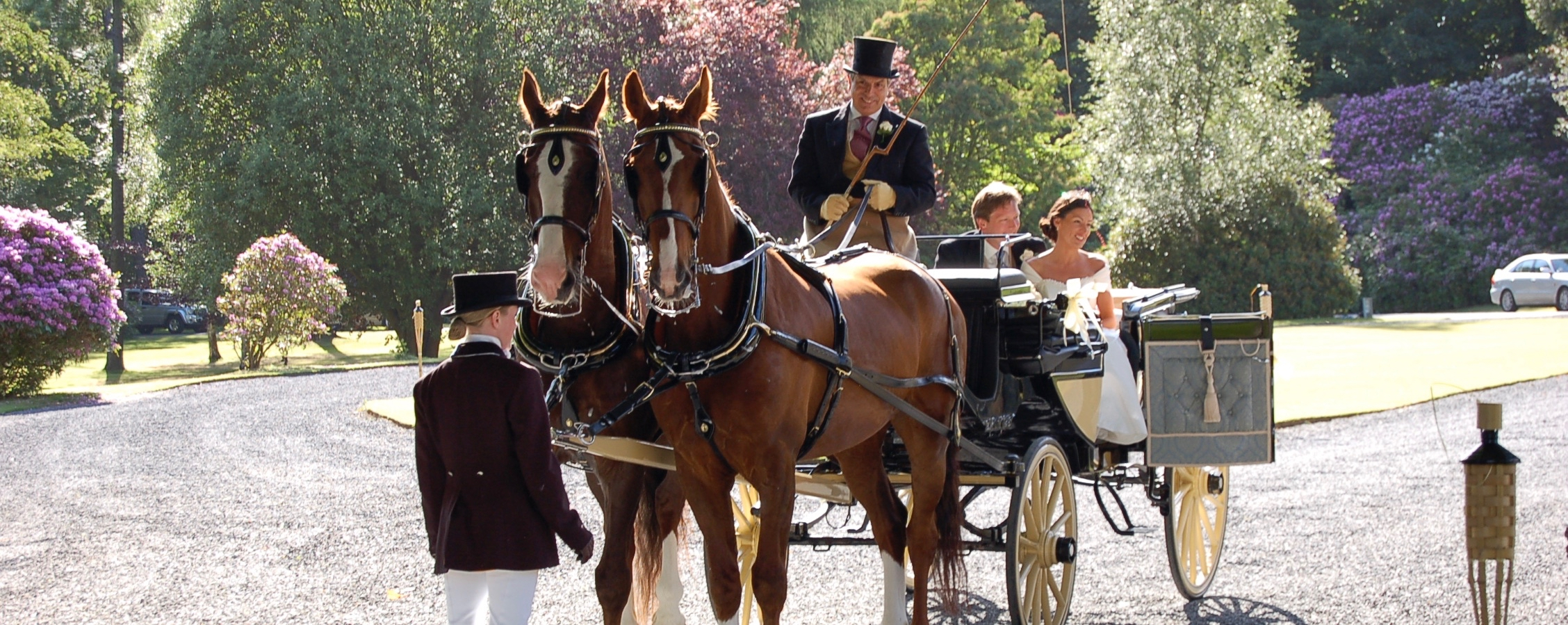 Horse And Carriage At Hillhouse
